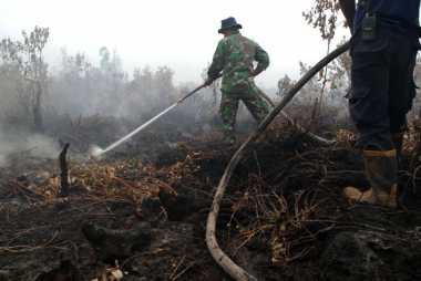 Sejak Januari 2016, 3.218 Hektare Hutan di Riau Terbakar