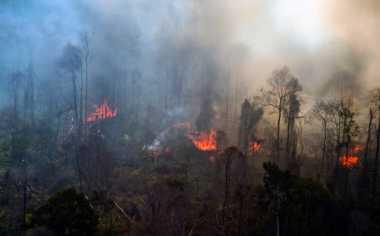 Dua Helikopter Milik Palembang Bantu Padamkan Kebakaran Hutan Riau