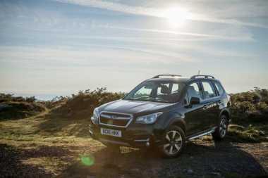Subaru Dandani Forester untuk Pencita SUV Mewah, Hanya Dibuat 100 Unit