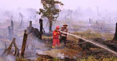 20 Hektare Kebun Sawit Kebakaran, Alat Berat Diterjunkan