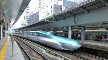 Kereta Api di Jepang Ini Berhenti Karena Ada Ular