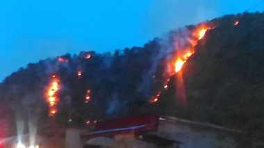 Api Kembali Membakar Puluhan Hektare Hutan di Sumbar