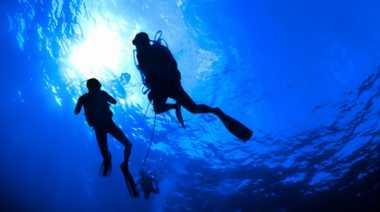 Berikut Daftar Spot Diving Terbaik Dunia (1)