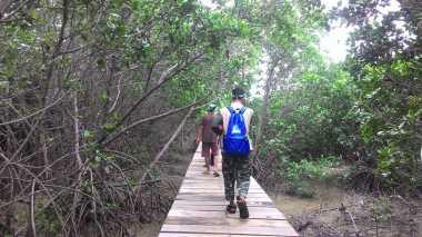 Brebes pun Punya Desa Wisata Mangrove yang Seru!