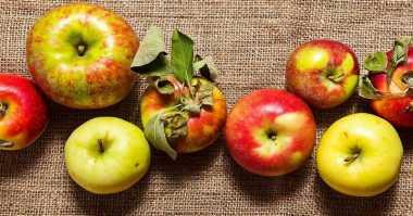TOP FOOD 1: Trik Jitu agar Warna Apel Tidak Cepat Jadi Kecoklatan