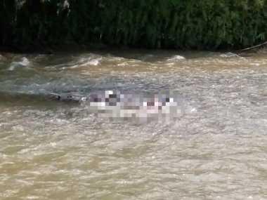 Mayat Laki-Laki Ditemukan Tersangkut di Kali Ciliwung