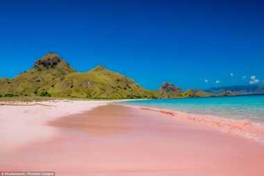 TOP TRAVEL 1: Ini Dia yang Menyebabkan Pasir Pantai Berwarna Pink