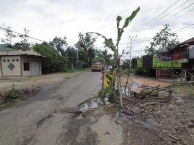 Jalan Rusak Tak Kunjung Diperbaiki, Warga Tanam Pohon Pisang