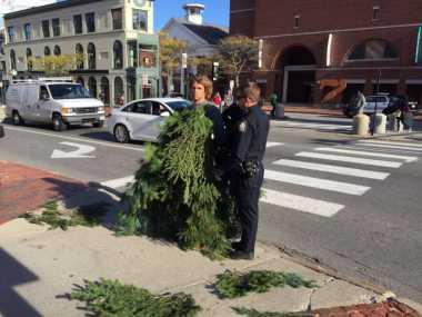 Halangi Lalin, Pria Berkostum Pohon di AS Ditangkap