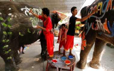 Museum Andalan di Thailand Ini Memanfaatkan Kotoran Gajah
