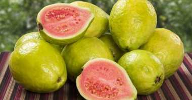 Makan Jambu Jaga Gula Darah Penderita Diabetes Tetap Sehat