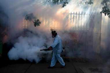 Myanmar Deteksi Infeksi Virus Zika Pertama