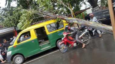 Angin Kencang di Tangerang, Pohon Tumbang Timpa Kios dan Angkot