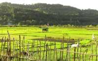 Pengalaman Menjelajah Pulau Terujung Barat Indonesia