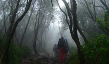 Puluhan Pendaki Terjebak Lahar Dingin Gunung Lokon