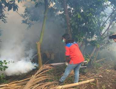 Dapat Keluhan Banyak Nyamuk, Rescue Perindo Fogging Desa di Jember