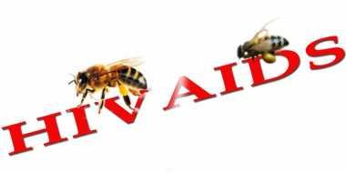 TOP HEALTH: Sengatan Lebah Bisa Membunuh Virus HIV