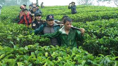 17 Mahasiswa Binus Tersesat, Jalur Pendakian Gede-Pangrango Tetap Dibuka