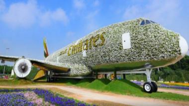 HOT THREAD (4): Keren, Pesawat Ini Terbuat dari 500 Ribu Bunga Segar