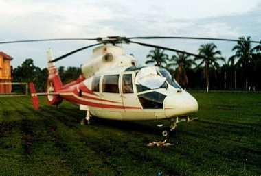 Hantam Burung, Helikopter di Malaysia Mendarat Darurat