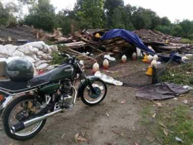 Diterjang Badai, Ribuan Ayam Milik TNI Tewas Tertimpa Kandang