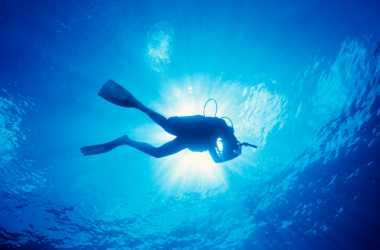 HOT THREAD (3): Kisah Unik Pelaut yang Hobi Membersihkan Laut dari Sampah