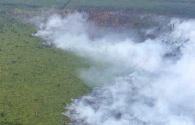 Lagi Patroli Udara, TNI Temukan Kebakaran Lahan di Bengkalis