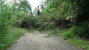 Diguyur Hujan,  Akses Jalan  ke Singaraja Tertutup Longsor