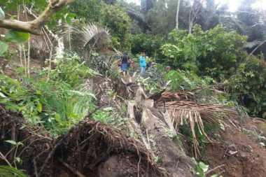 Akses Jalan Provinsi di Brebes Putus Diterjang Longsor