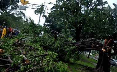 Hujan Deras Guyur Yogyakarta, Bandara Adi Sudjipto Sempat Ditutup