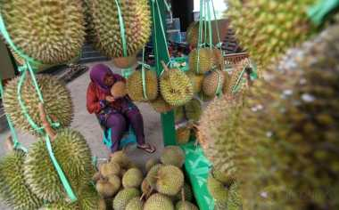 TOP FILES: Nyam...Nyam! Nikmatnya Ngemil Durian Sambil Mengulik Hikayatnya