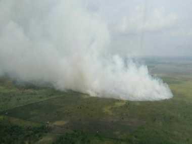 Karhutla Landa Riau, 20 Hektare Hangus Dilalap Api