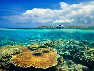 7 Kuliner Lezat yang Wajib Dicicipi ketika Mengunjungi Lombok