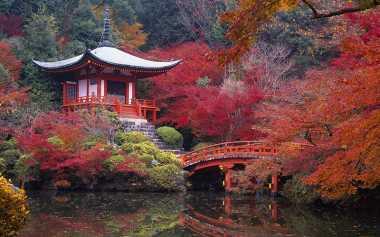 Pelajari Bisnis, Mahasiswa IPB Akan Field Trip Industri ke Jepang