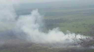 Hujan Lebat Padamkan Kebakaran Lahan Gambut di Rokan Hilir