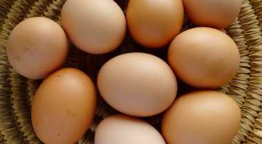 HOT THREAD (4): Pecahkan Telur Ayam Berukuran Besar, Ternyata Isinya...