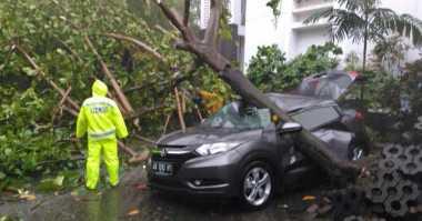 Tertimpa Pohon, Mobil Milik Dosen UGM Ringsek