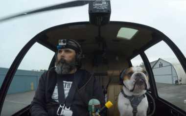 VIDEO: Gokil, Ulang Tahun Anjing Ini Dirayakan dengan Perjalanan Helikopter