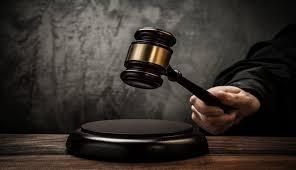 Tok-Tok...Penjual Kulit Harimau Divonis 2 Tahun Penjara
