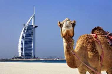 Serunya Pengalaman Mischa Chandrawinata Berlibur di Dubai