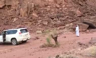 """VIDEO: Kocak! Berniat Robohkan Sisa Batang Pohon, Mobil Ini Justru Kena """"Karma"""""""