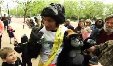 Demi Dana Amal, Polisi Inggris Merangkak Puluhan Kilometer dengan Mengenakkan Kostum Gorila