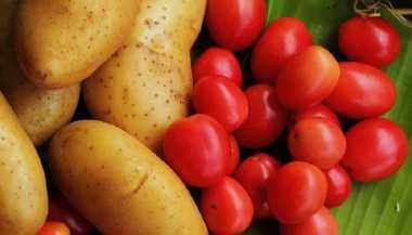 Ini Alasannya Anda Perlu Membatasi Konsumsi Tomat dan Kentang