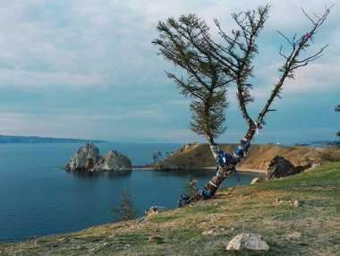 Danau Baikal Tempat Berkumpulnya Hewan Aneh di Rusia