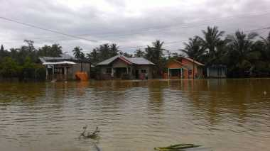 Tolong! Ribuan Warga Sembakung Kaltara Terdampak Banjir Kiriman dari Malaysia