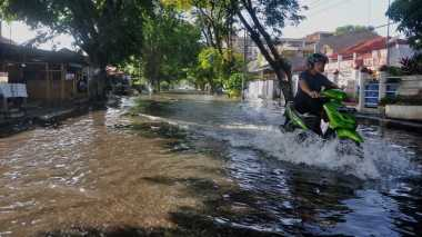 Nah, Kerugian Akibat Banjir di Kendari Mulai Didata