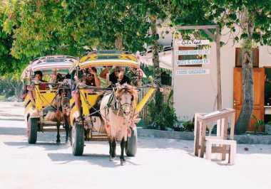 Yuk Coba Naik Cidomo, Taksinya Gili Trawangan Lombok