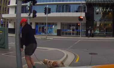 VIDEO: Ngakak! Sibuk Ngomel-ngomel, Kakek Pejalan Kaki Tabrak Tiang Lampu