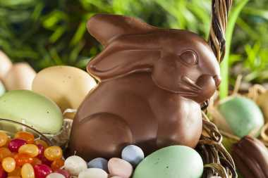 Ngabuburit Yuk Sambil Bikin Choco Rabbito Bareng si Kecil!