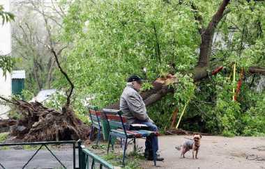 11 Orang Tewas Akibat Hujan Badai di Moskow